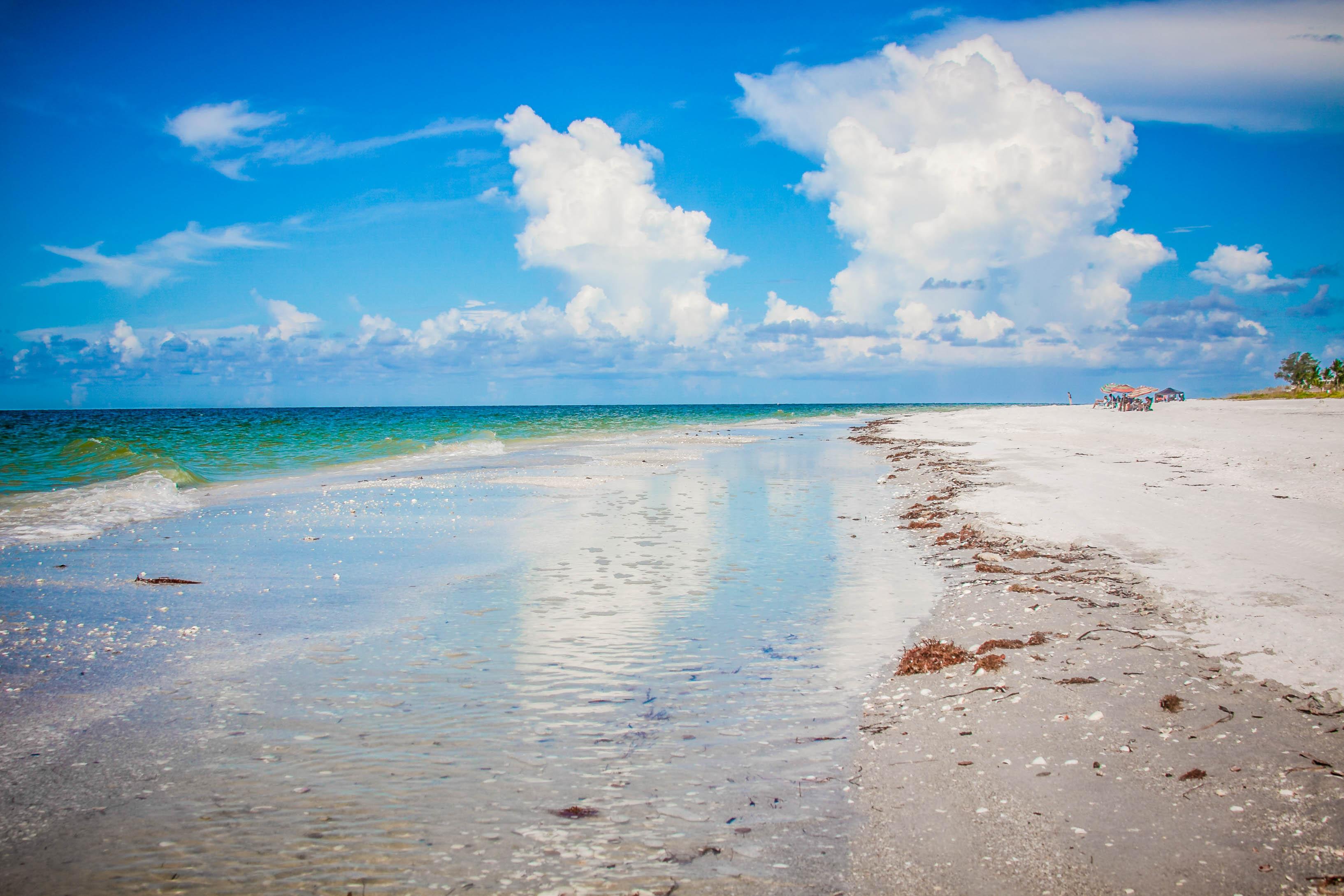 Beach Low Angle